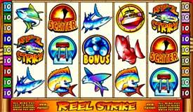 Lucky pants bingo casino